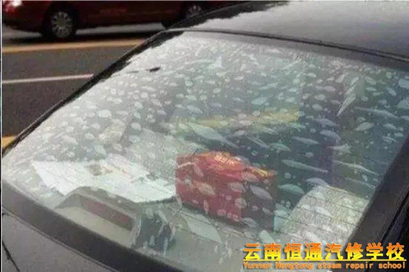 汽车贴膜有气泡怎么办?